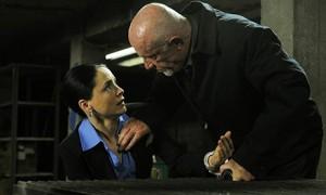 Laura Fraser como Lydia Rodarte-Quayle