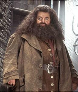 Robbie Coltrane como Hagrid
