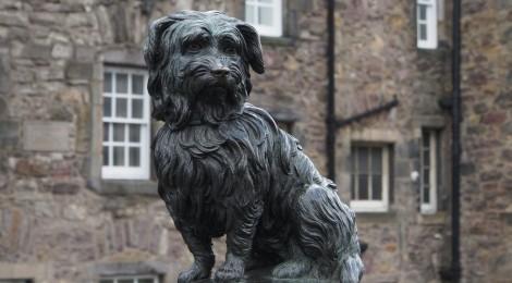 El perro más famoso de Escocia