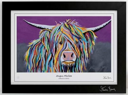 Lámina de arte representando a una vaca de las Tierras Altas de Escocia en colorines
