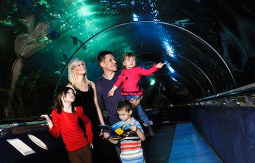 Familia con niños en el Deep Sea World cerca de Edimburgo